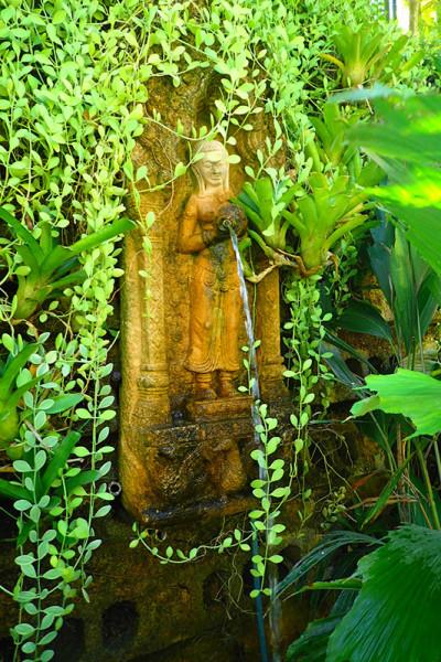 ботанический сад на Пхукете phuket botanic garden